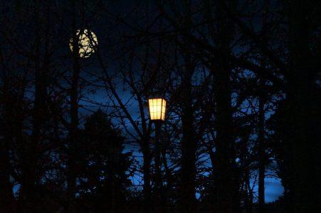 light-1519784_1920